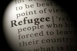 Fake Dictionary, Dictionary definition of the word refugee